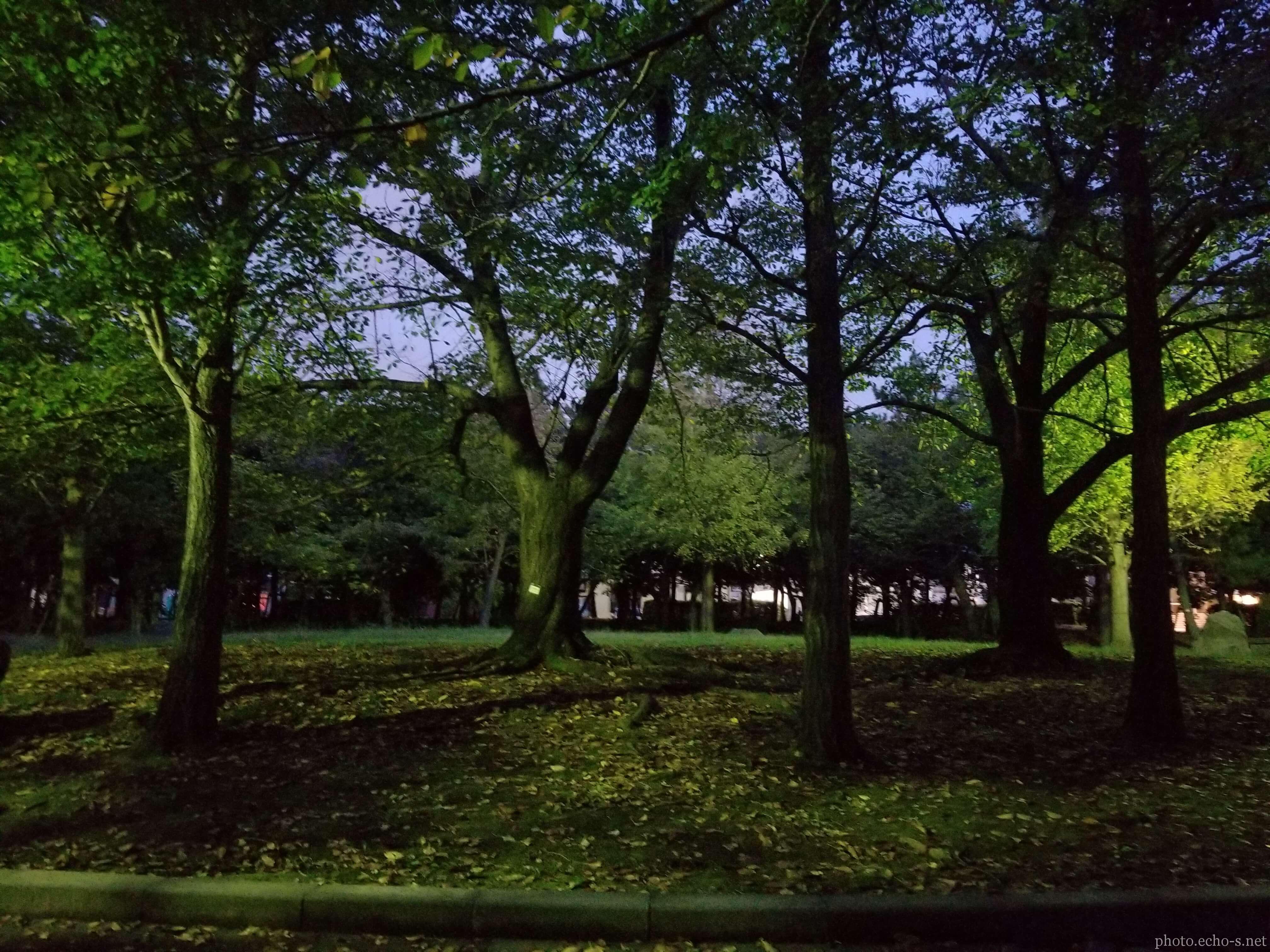 浦安 今川記念公園