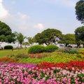 横浜 山下公園 西側花壇