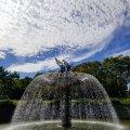 昭和記念公園 噴水