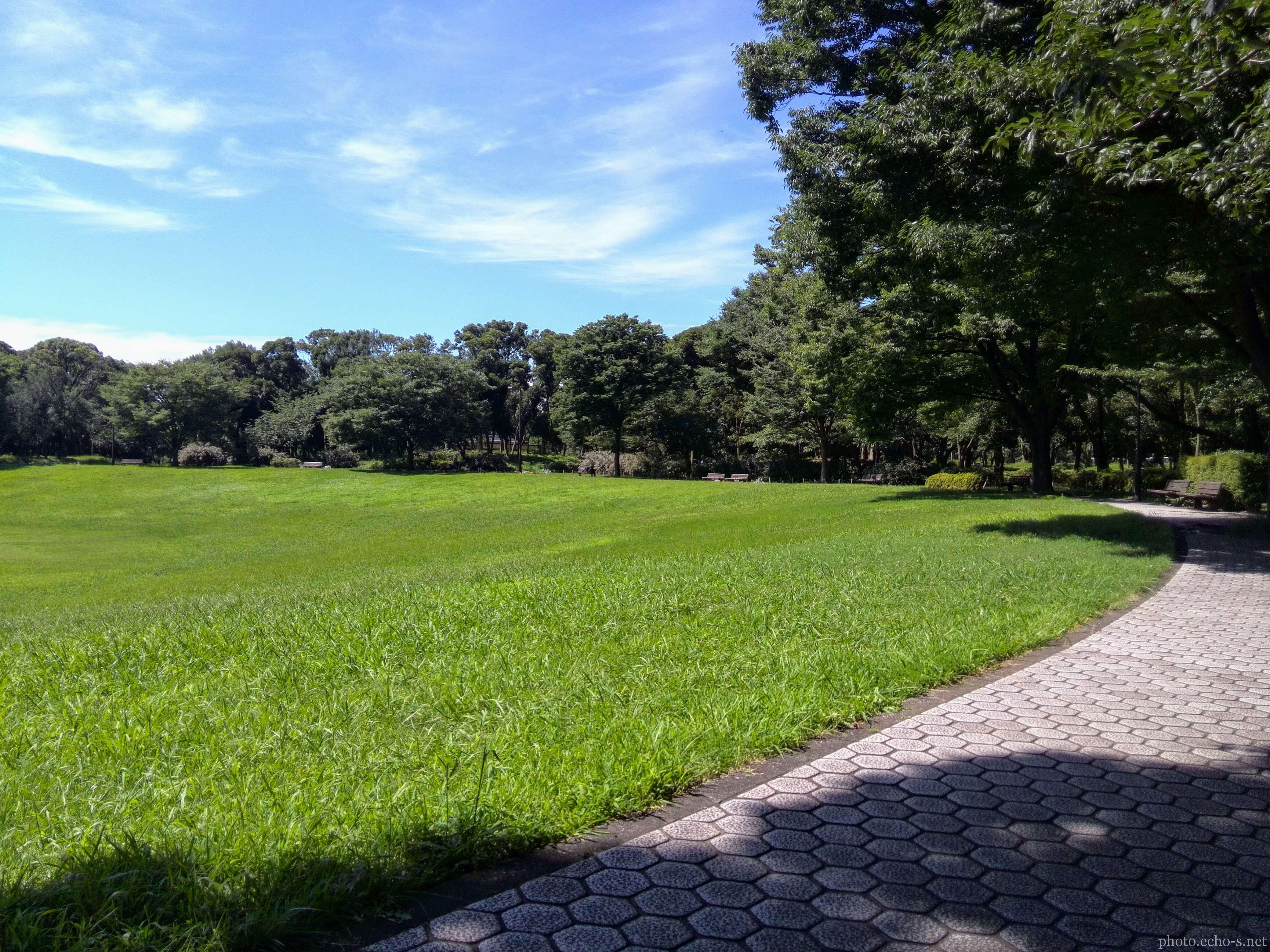 夢の島公園 コロシアム