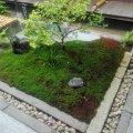 京都 東寺 観智院 四方正面の庭