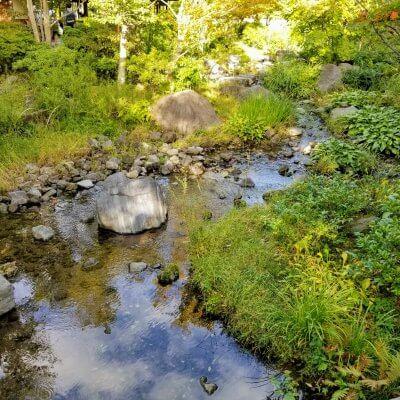 昭和記念公園 日本庭園 流水
