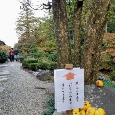 群馬県 三徳記念館 かりん