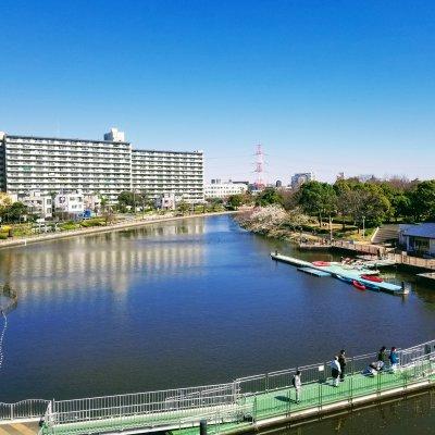 江戸川区 葛西かもめ橋 新左近川親水公園