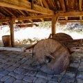 コスタリカ共和国 サンタ・ロサ国立公園 牛馬車