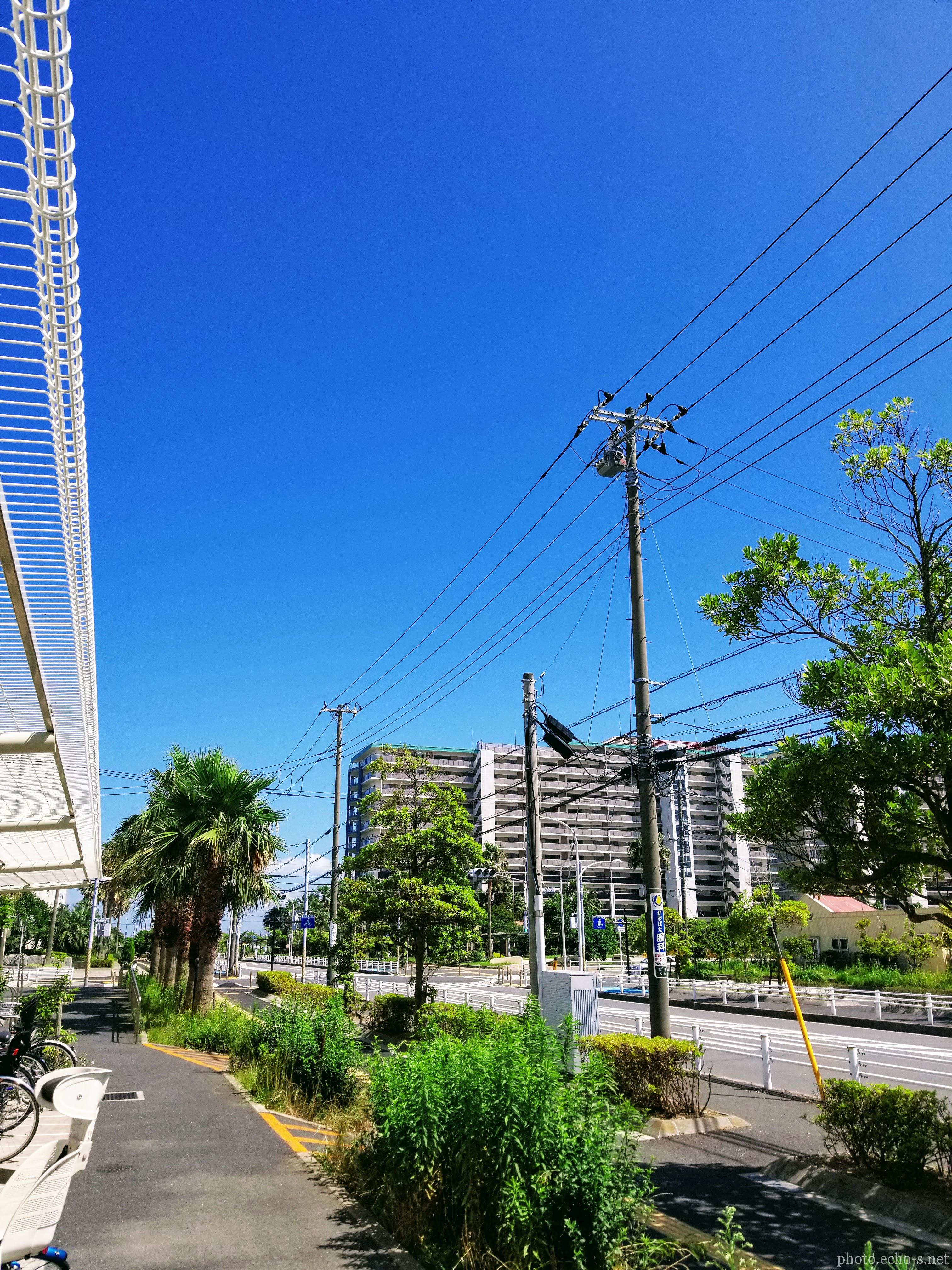 新浦安 高洲 東街区公園 青空