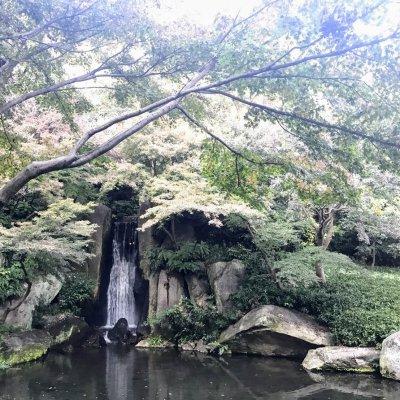浜松城公園 日本庭園