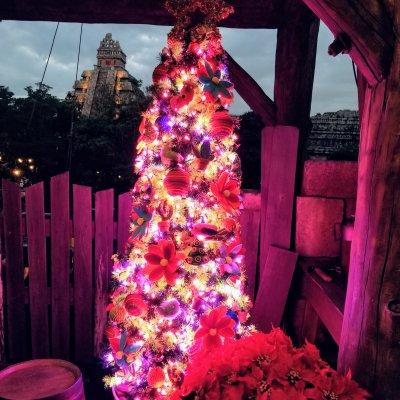 東京ディズニーシー ロストリバーデルタ クリスマスツリー