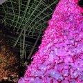 六本木 東京ミッドタウン クリスマスツリー