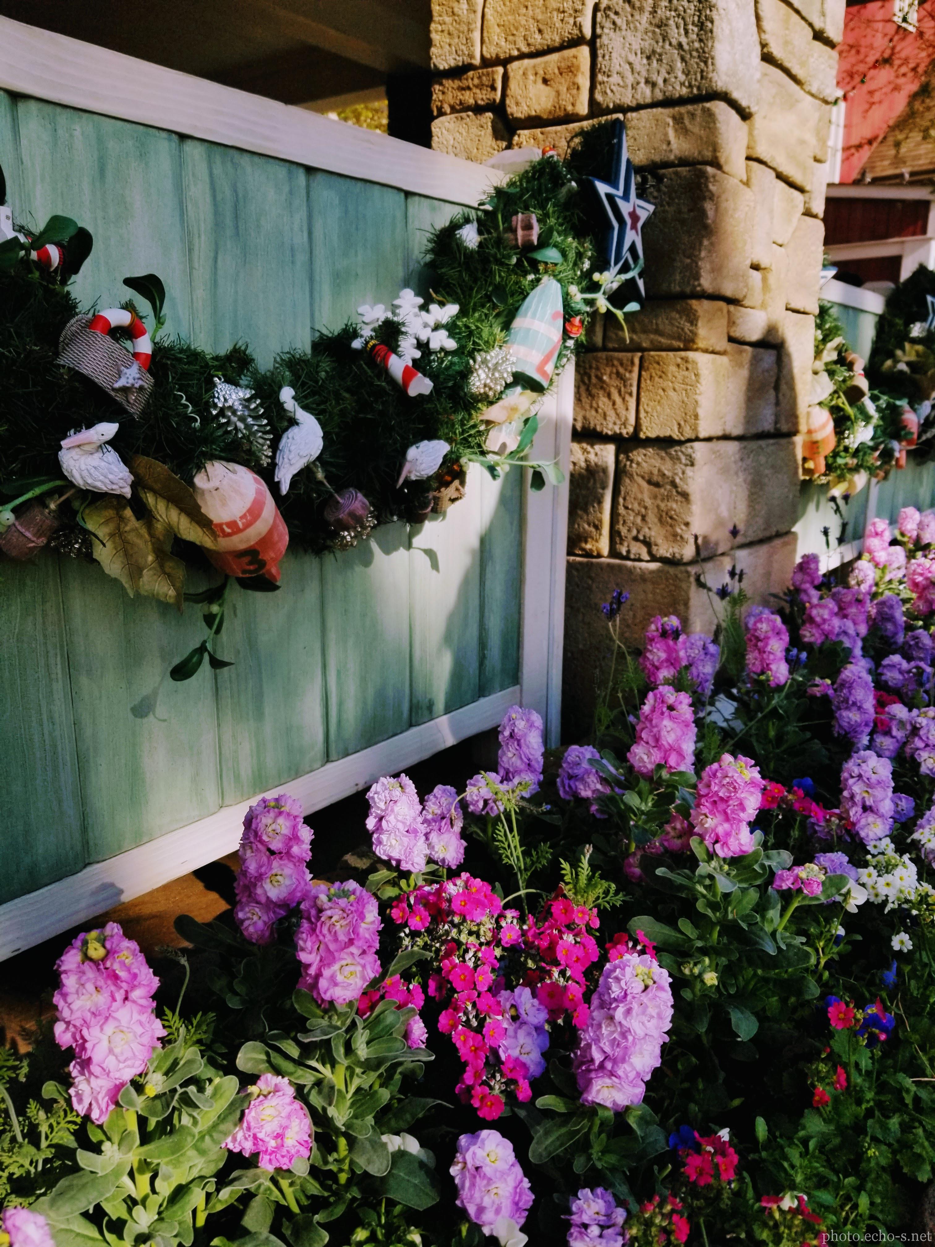 東京ディズニーシー ケープ・コッド・クックオフ 花壇