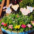 東京ディズニーシー ケープ・コッド・クックオフ 植木鉢
