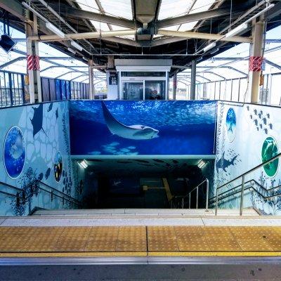 東京 江戸川区 葛西臨海公園駅 ホーム階段