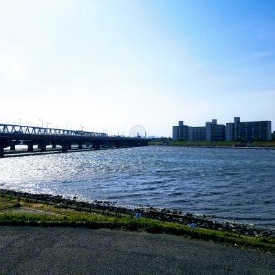 舞浜 旧江戸川 舞浜大橋 河川敷 昼間