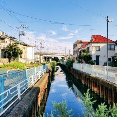 千葉県 市川 稲荷木 排水路