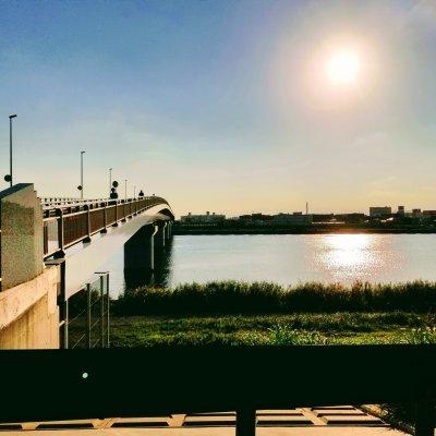 千葉県 市川 高谷 妙典橋
