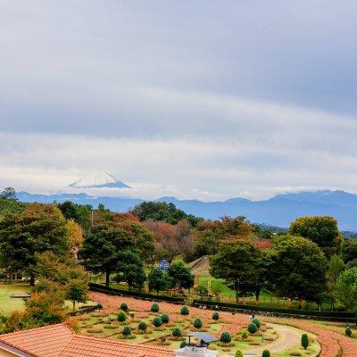 山梨 北杜市 ハイジの村 富士山