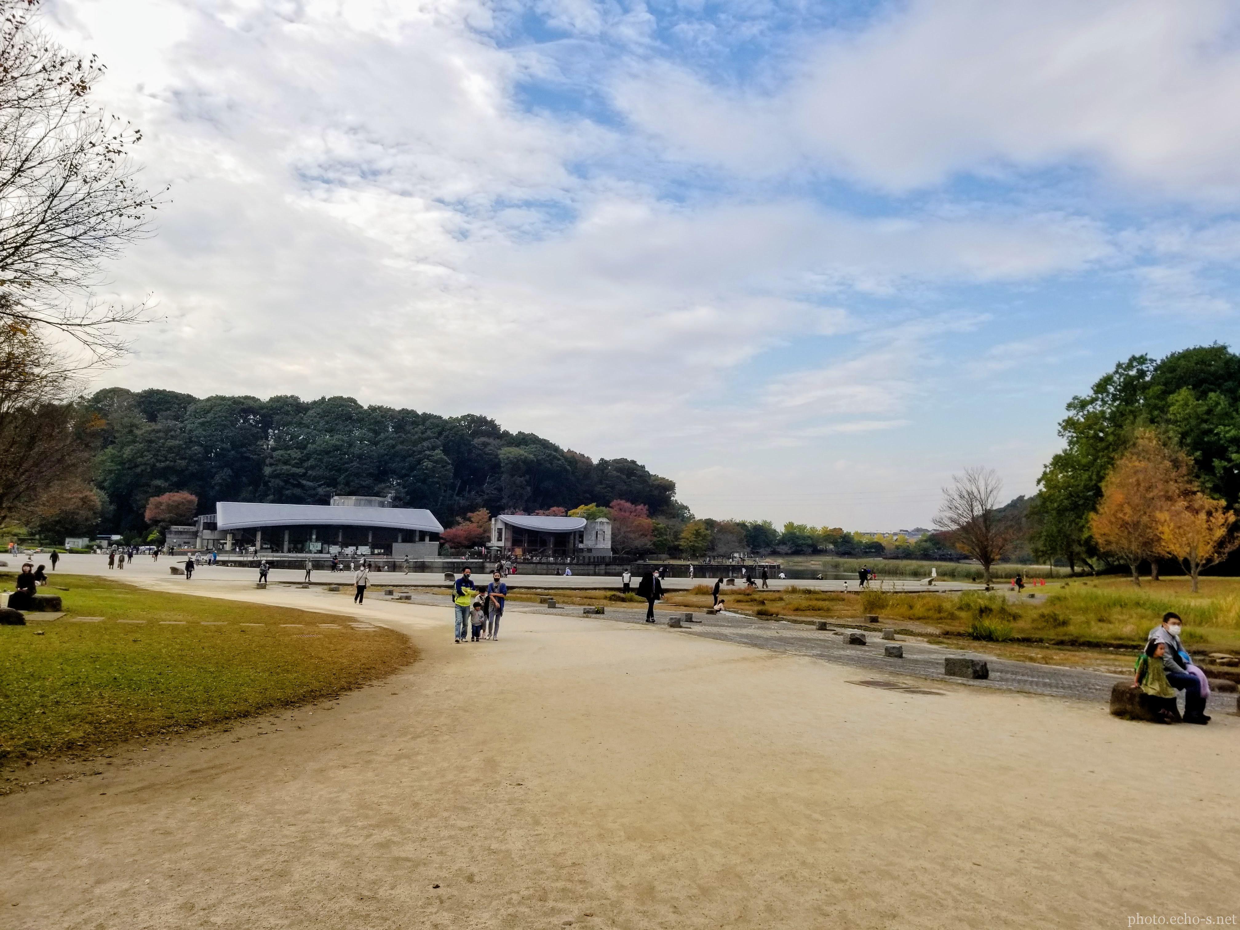 松戸 21世紀の森と広場 千駄堀池