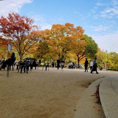 松戸 21世紀の森と広場 紅葉