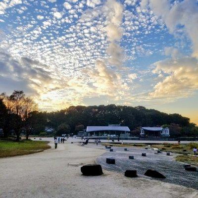 松戸 21世紀の森と広場 千駄堀池 夕暮れ