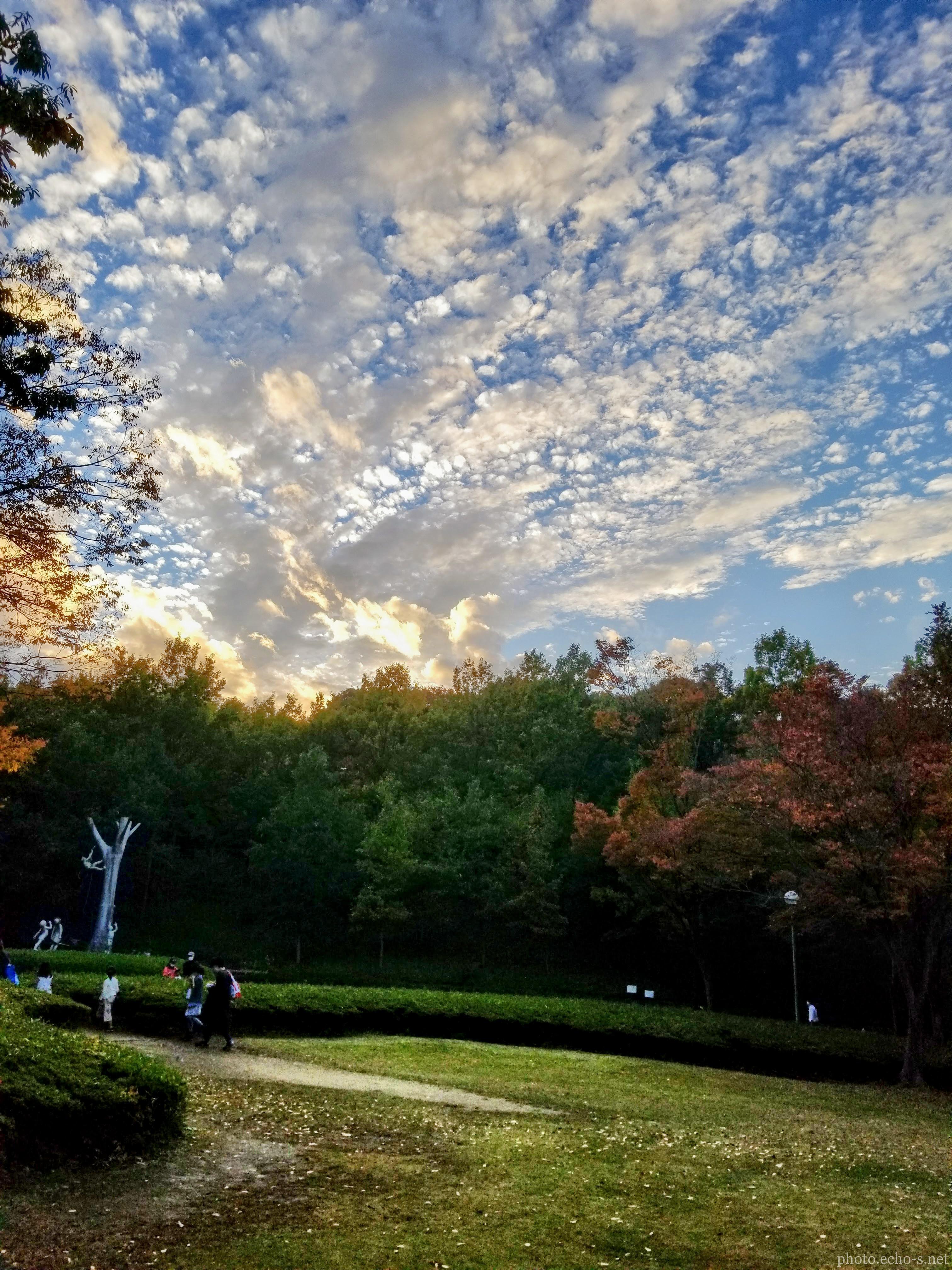 松戸 21世紀の森と広場 閉園