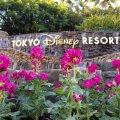 舞浜 東京ディズニーリゾート サインモニュメント ストック